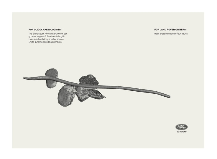 Campaign: Rare: Giant South African Earthworm / Advertiser: Land Rover / Agency: Y Dubai / Country: UAE / Creative Director: Shahir Zag & Kalpesh Patankar / Art Director: Kalpesh Patankar / Award: Copywriting Cristal