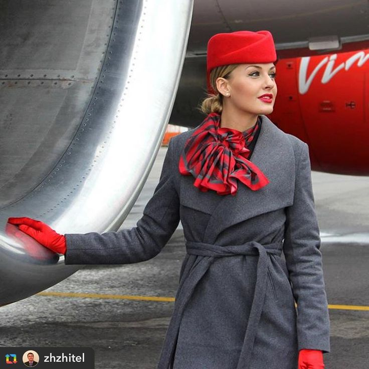 cover letter flight attendant%0A Instagram