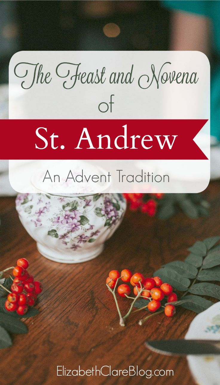 Simple ways to start the Christmas or Advent novena of St. Andrew as a family in the Catholic home, with printable prayer!