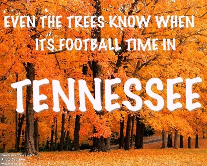 Go VOLS  (We should have a pretty fall this year with all the rainfall this summer)