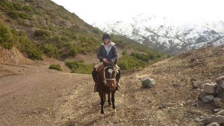 Horseback winter rides: The cordillera around Santiago is in many ways more beautiful in winter than even in summer and winter rides in the frequent sunshine are a real pleasure – not too cold but not unbearably hot either. http://horseridingchile.com/blog/horseback-winter-rides