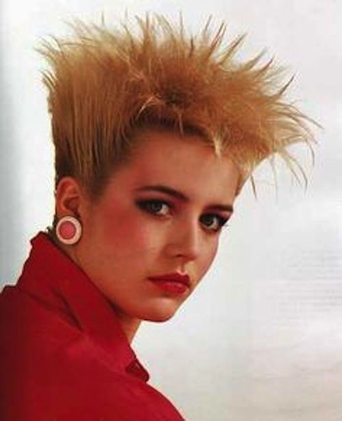 The 80s famous overgrown Chia pet hairstyle.