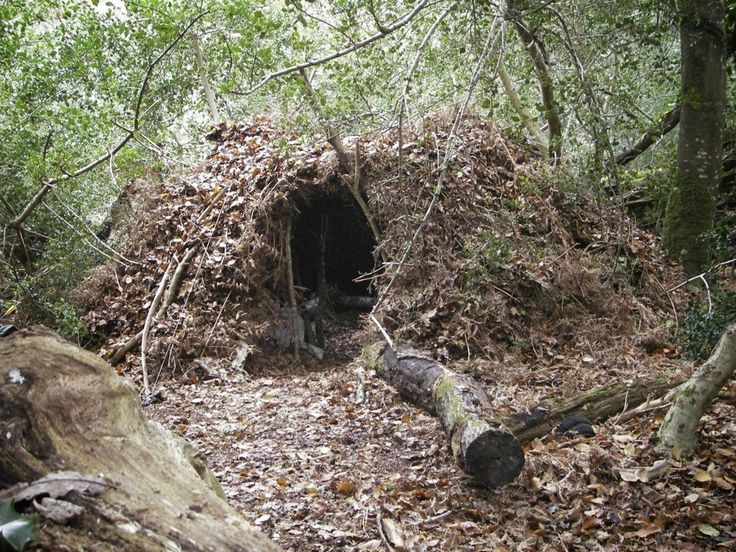 Bushcraft group shelter