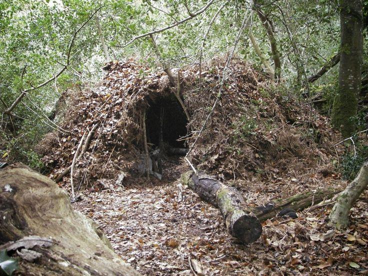 Bushcraft group shelter