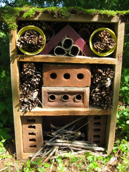 Bug Hotel, something the kids can make.