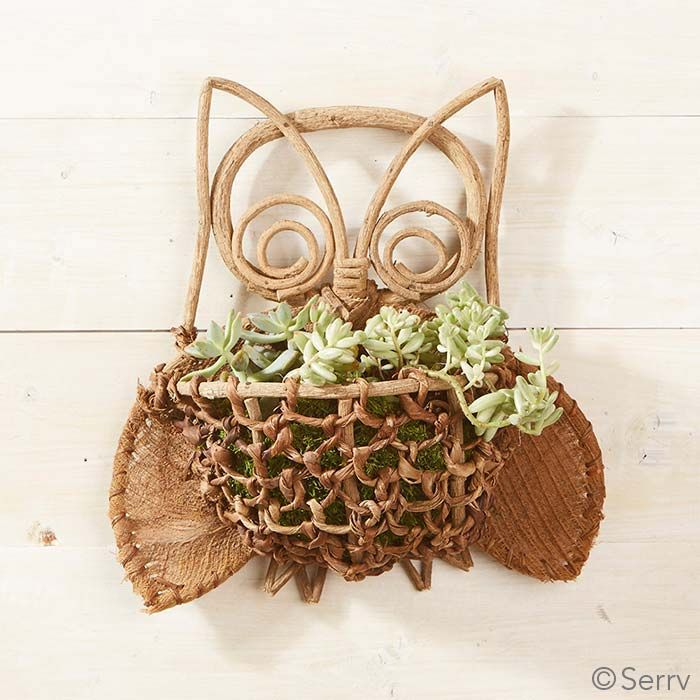 Bacbac Owl Basket | So many possibilities for this decorative wall basket! Fill with moss and add your favorite small plants. Or use it to keep gardening gloves and clippers handy. Made using traditional bacbac technique from natural galtang vine, abaca, and coconut fibers. serrv.org