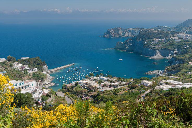 Cala Feola vista dall'alto(Isola di Ponza)