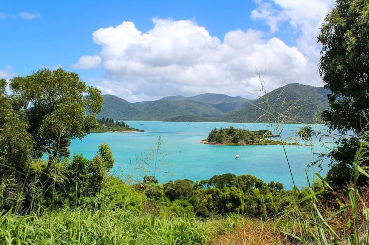 First views of the Whitsunday islands as we explore Mount Rooper and Conway National Park #whitsundays #tropicalnorthqueensland #tropicalislands #proserpine