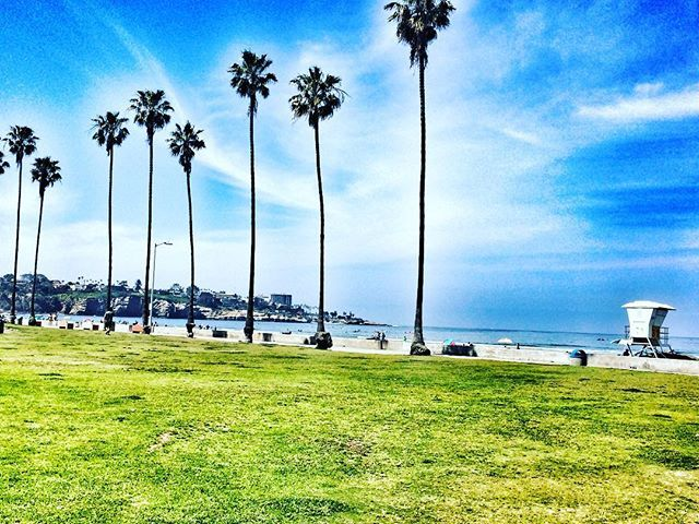 ☀️🌴🏖 #californiadreaming #sandiego #sun #sand #pacificcoast #secondhome #caligirl #vacayvibes #mood #inlove #lajolla #palmtrees #paradise #beachday #lajollalocals #sandiegoconnection #sdlocals - posted by Z Troya  https://www.instagram.com/suztroya. See more post on La Jolla at http://LaJollaLocals.com