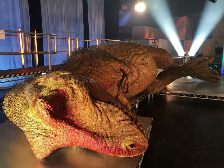 "H φωτογραφία της ημέρας απο την εκπομπή ""Η Ανατομία Του Τυραννόσαυρου Ρεξ"". #picoftheday #NatGeoChannelGR #NGC"