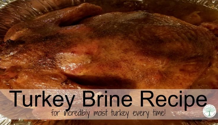 Want the moistest, juiciest bird you have ever roasted this holiday season? Try this amazing brine recipe and see your friends and family swoon!