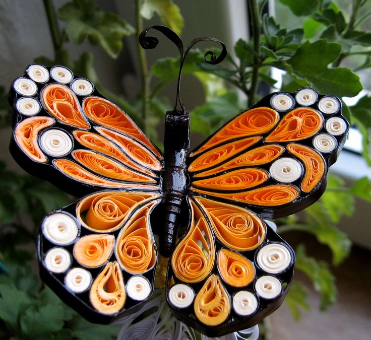 Quilling Earring Designs Butterfly : quilling butterfly Quilling Pinterest Quilling, Butterfly and Paper quilling