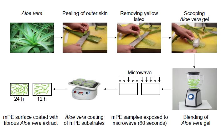 Figure 1 Steps involved in coating of Aloe vera extract on mPE samples.