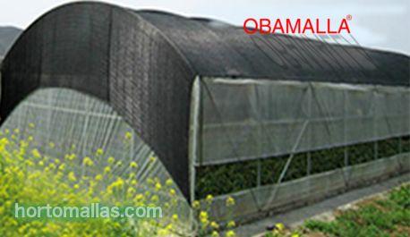 La idea de cultivar hortalizas bajo una casa sombra (o casa malla como la llaman muchos)  viene originalmente de la necesitad de aprovechar terrenos agrícolas en climas áridos y semi aridos-deserticos.