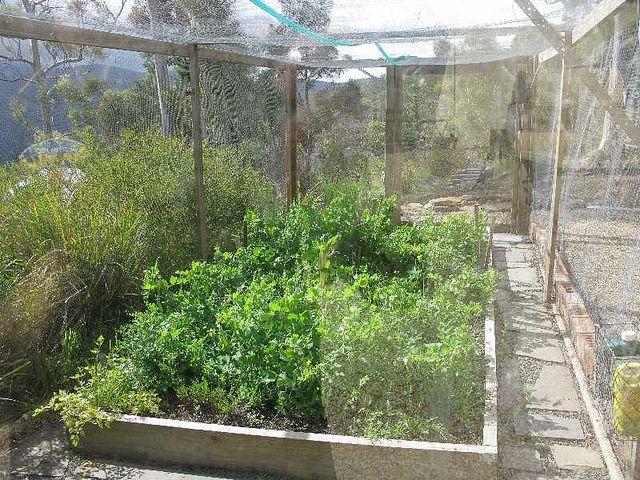 99 best vegetable garden enclosures images on pinterest for Enclosed vegetable garden designs