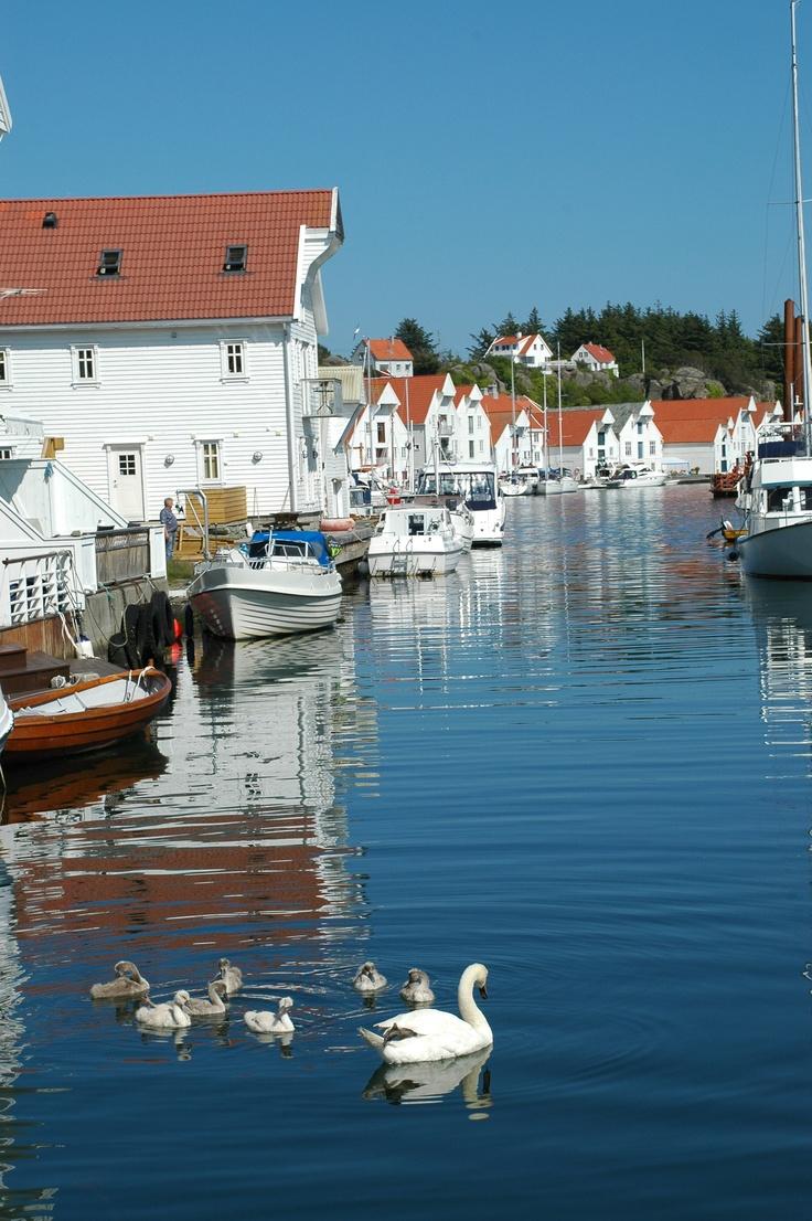 I Skudneshavn. Ta en rusletur i gamle Søragadå og stikk innom en av de mange små kafeene. Du blir hensatt til en helt annen tid. Den årlige festivalen, Skudefestivalen, samler turister fra fjern og nær, og mange kommer sjøveien i seilskute.