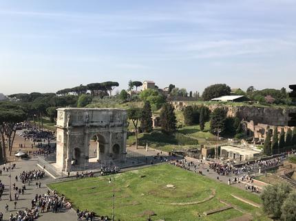 Foton av Snabbinträde: Halvdagstur till fots i antikens Rom och Colosseum - Viator