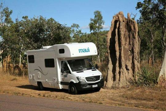 Impressive cathedral termite mounds in the southern Kakadu NP. #kakadu #NTAustralia #gobycamper