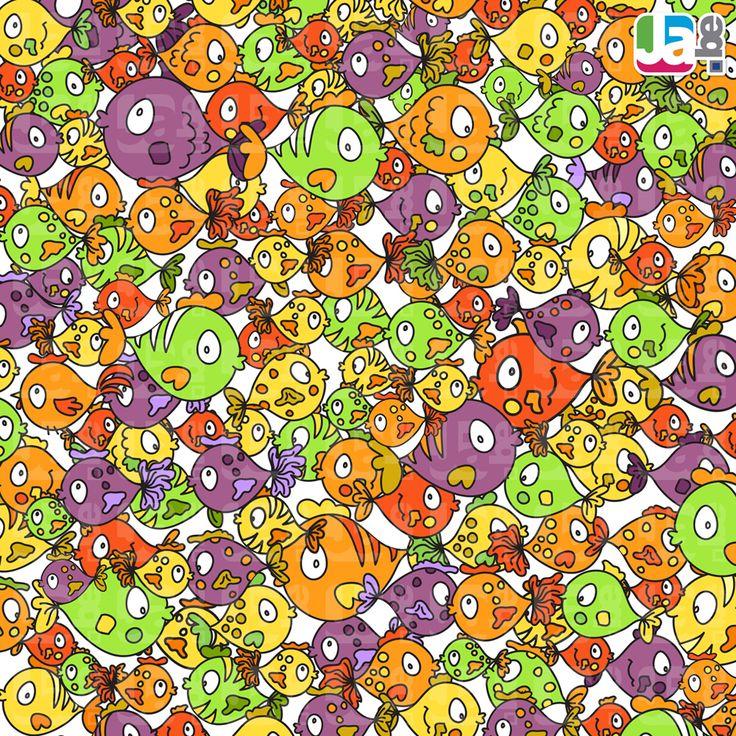 zoek de niet vis 4