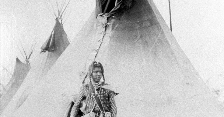 """Tribus nativas americanas en Nueva York en 1846. Dos grupos principales de indios americanos vivieron en Nueva York en el siglo XVIII, los algonquin y los iroqueses, cada uno compuesto de una variedad de tribus. En 1830, el presidente Andrew Jackson firmó la """"Ley de Remoción de los Indios"""" (""""The Indian Removal Act"""") que dio la facultad al gobierno federal para establecer tratados en los que los ..."""