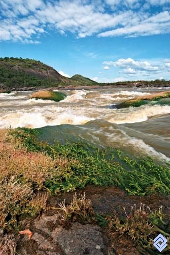 Los raudales del río Orinoco son una de las más bellas manifestaciones del paisaje de la Orinoquia colombiana y venezolana.