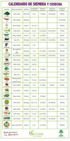 Germina La Florida: Calendario de Siembra y Cosecha (para sembrar en Chile, sur…