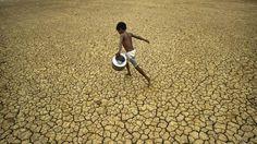 DÍA MUNDIAL CONTRA EL TRABAJO INFANTIL Cerca del 60 % de los niños que trabajan lo hacen en el sector agrícola  Casi 100 millones de niños y niñas, asegura la FAO  «Para alcanzar hambre cero, tambiém hay que lograr el trabajo infantil cero», manifiesta José Graziano da Silva