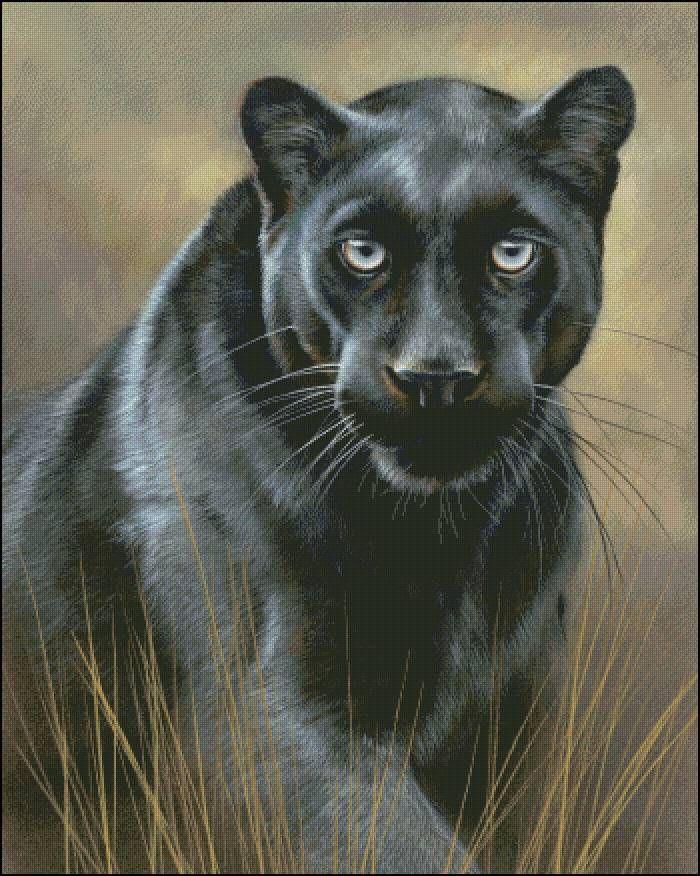 """Схема вышивки крестом """"Пантера"""" (panther cross stitch)"""