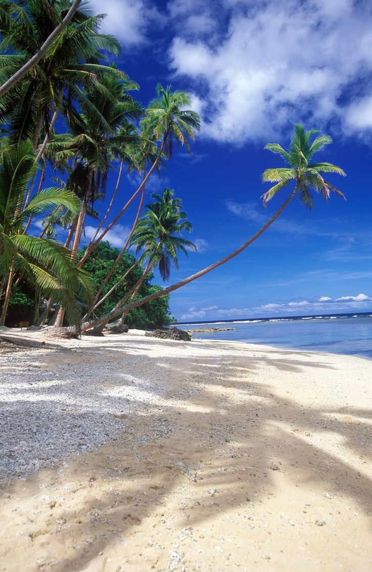 "Namale Fiji Beach ~ Just LOVE The Beach, Smell of The Ocean and Palm Tree's Swaying in A Gentle Breeze .. ""Class Liv-In"" ..."