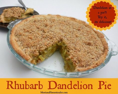Rhubarb dandelion pie recipe. Dandelion in a pie?! Try it, its delicious!   Montana Homesteader