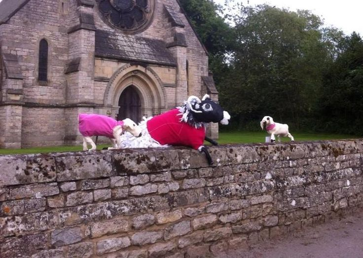 The flock at Christ Church, Appleton le Moor includes Agnes #PinkSheep with lambs too :-)