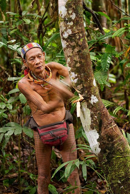 Mentawai Tribesman Sumatra, Indonesia