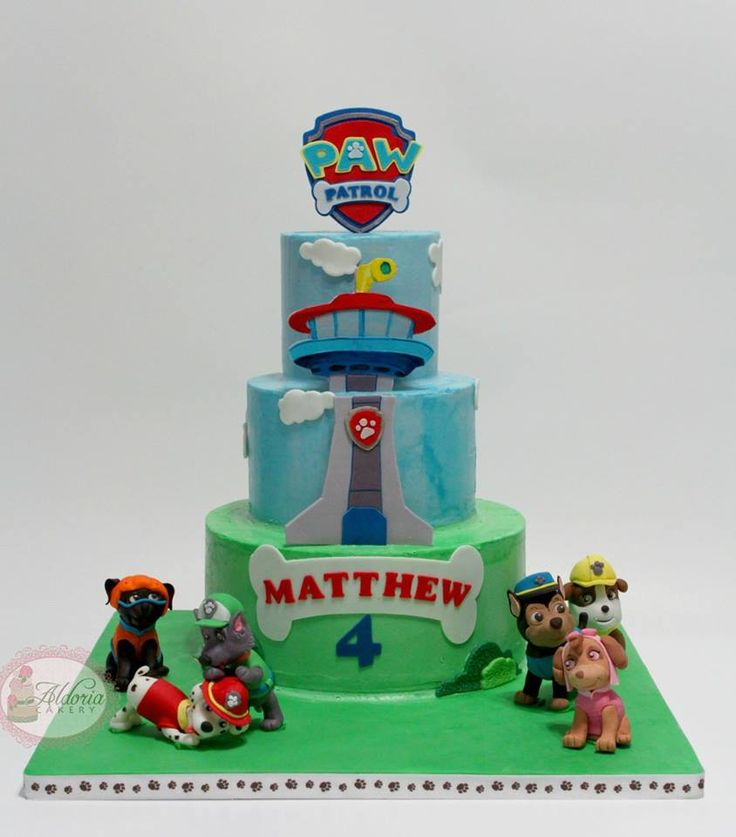Best Paw Patrol Cakes Images On Pinterest Paw Patrol Party - Paw patrol birthday cake