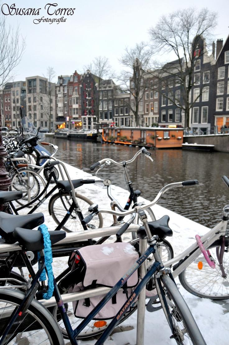 la bicicleta ese modo de transporte que es un estilo de vida , en las calles de amsterdam.