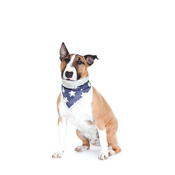 Mr Pickles's Pieces of Flair Bandanas Designer bandandas for Dogs