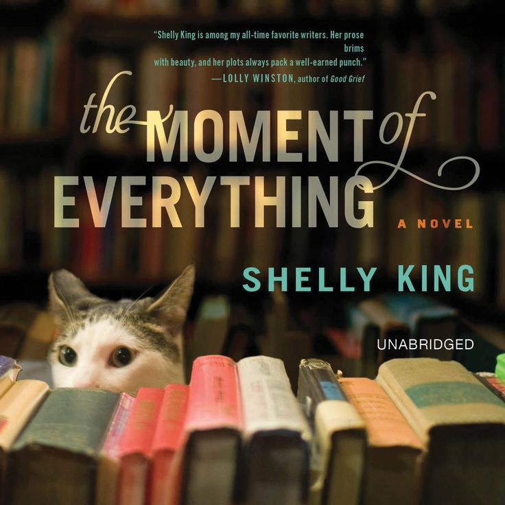 The Moment of Everything by Shelly King #audiobook #audioreading #contemporaryfiction #booksaboutbooks