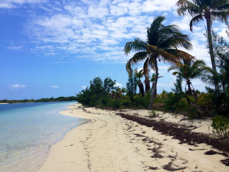 Cayo Largo island
