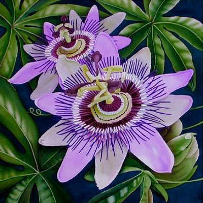 Silk Painting Passion Flower