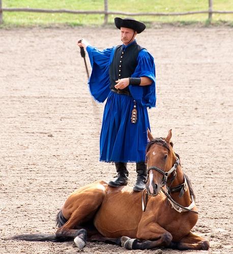 Hungarian Puszta Horsemanship exhibit
