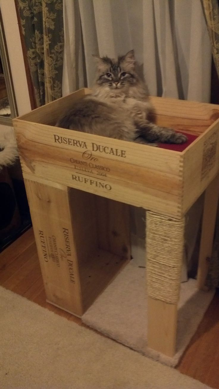 1 Bed Wine-Crate Cat Condo, with Cat Scratcher. $65.00, via Etsy.