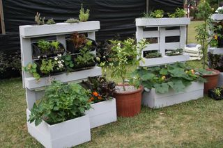 OH I LOVE THIS! Use an old shipping crate/pallet and some nail bins to create vertical garden space. :)