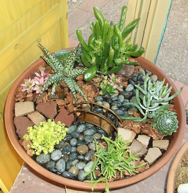 C mo hacer un jard n en miniatura e im genes de algunos for Como decorar un jardin con macetas