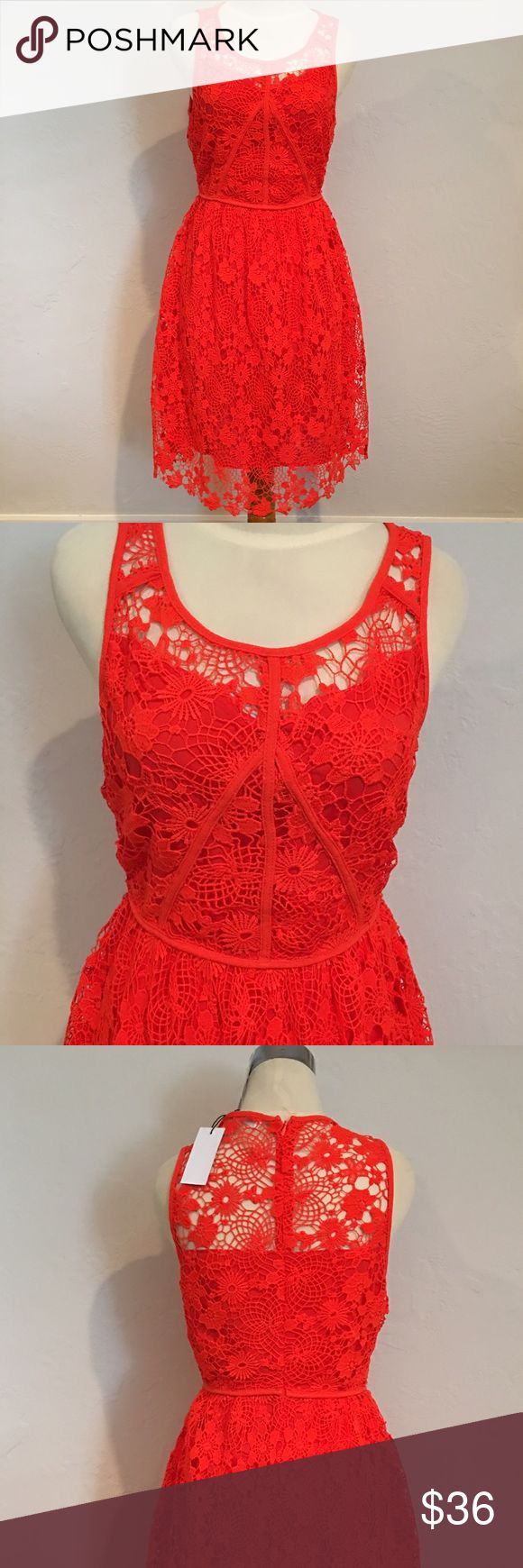 """SUGAR + LIPS Short Sleeve Orange Lace Dress S NWT SUGAR + LIPS Short sleeve Orange Blossom Lace Dress with attached lining.  96% Polyester 4% Spandex Dress.  Lining material is 100% Polyester.  Length of the dress is approx. 36"""".  Arm pit to arm pit is approx. 16"""" - 16 1/2"""" W.  Size Small. NWT SUGAR LIPS Dresses Midi"""