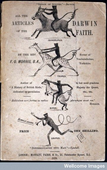 """""""All the Articles of the Darwin Faith"""" (1875), an anti-evolutionist pamphlet by Rev. Morris."""