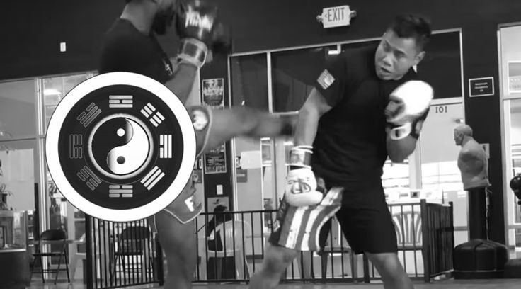 Cung Le, Martial Arts, Mixed Martial Arts, BJJ, Kickboxing, KungFu, Takedown, Sanda, MMA, Martial Arts Takedown, BJJ Takedown, KungFu Takedown, MMA Takedown
