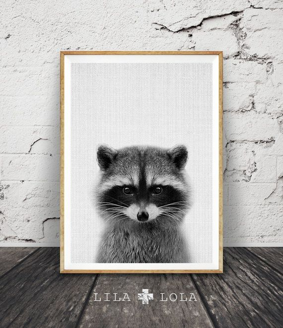 Nursery Animal Racoon Print Printable Woodlands Decor by LILAxLOLA
