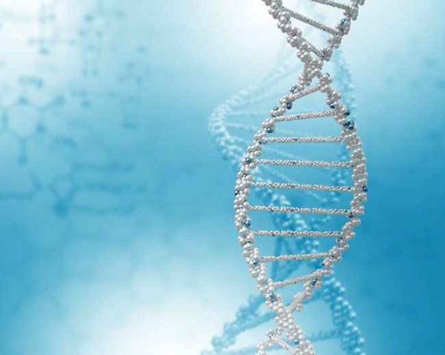 PALB2: A New Breast Cancer Gene | Skinny Mom | Where Moms Get the Skinny on Healthy Living