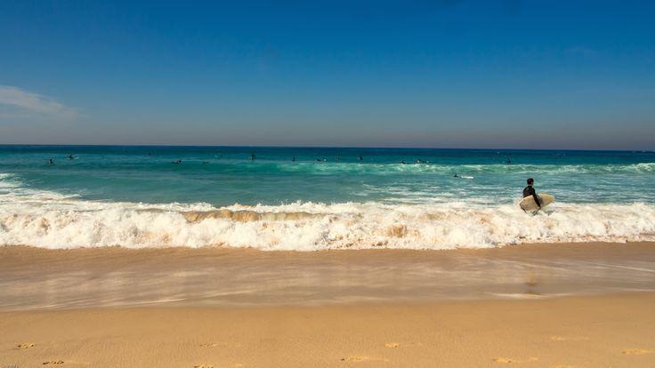 Surf at Bondi Beach