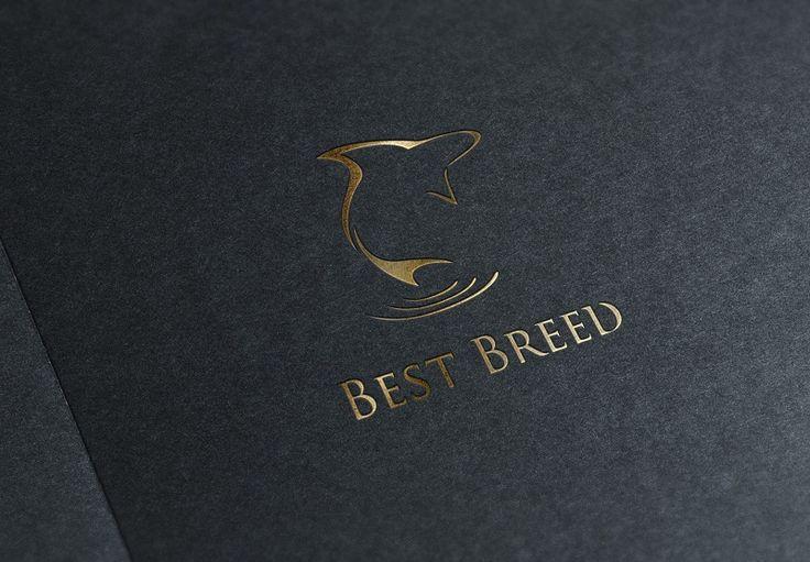 Comelite IT Solutions | Best Breed Logo Design