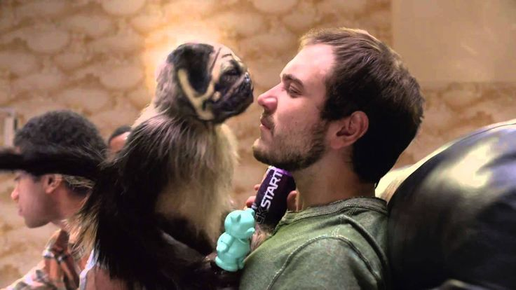 Very Creative, love it Mountain Dew | Puppy Monkey Baby
